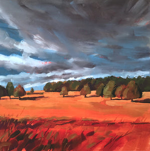 Dark Stormy Sky by Jane French