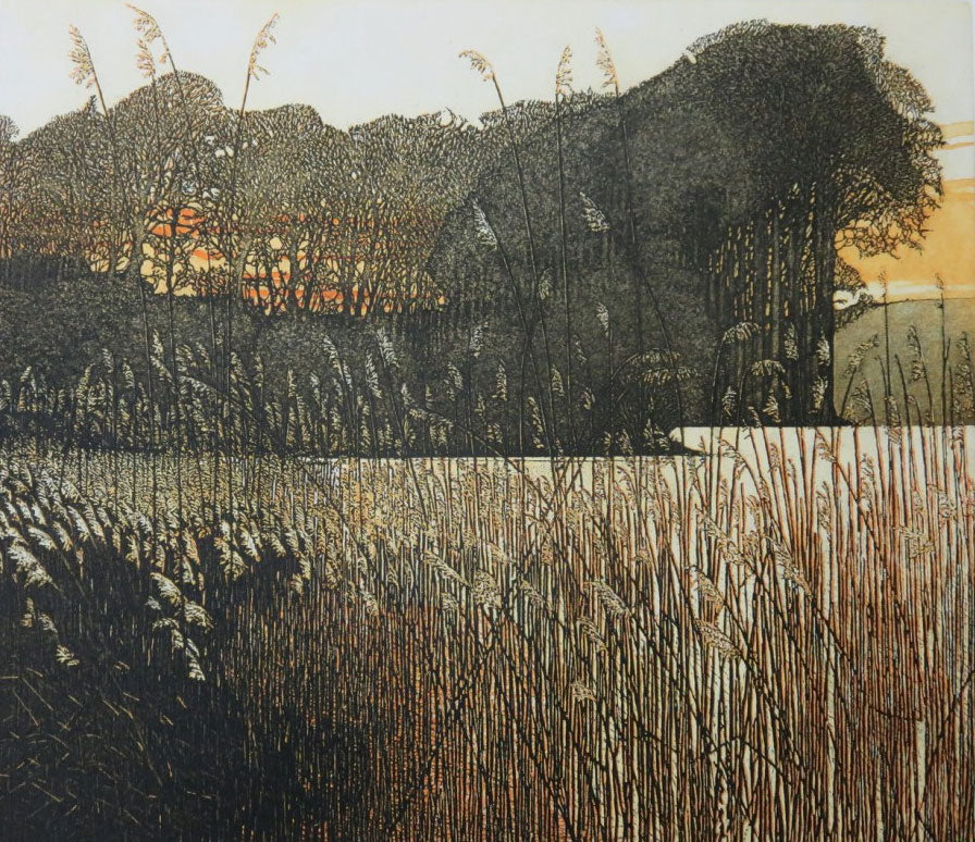 Late Light II by Phil Greenwood