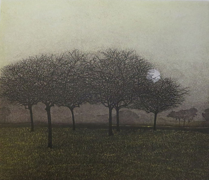 Winter Copse by Phil Greenwood
