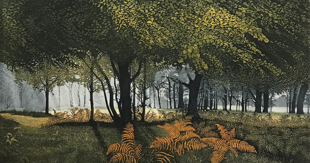 Dawn Glade by Phil Greenwood