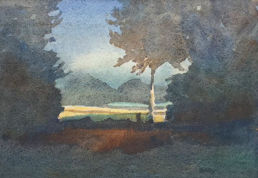 Evening Sun by Catherine Headley