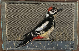 Greater Spotted Woodpecker (Stoneywell) by Michelle Holmes