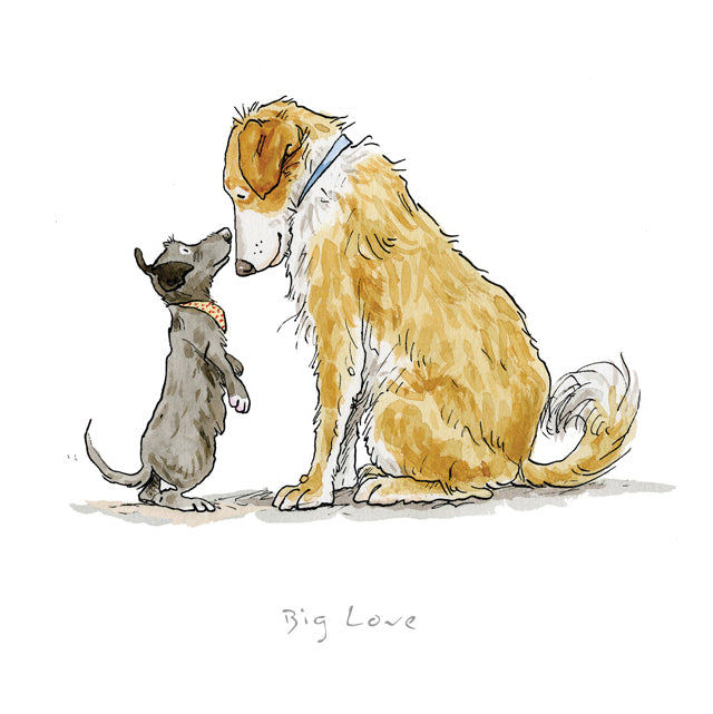 Big Love by Anita Jeram