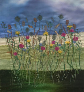 Flowers of the Machair by Alison Leason