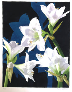 White Lillies by Mary Rodgers