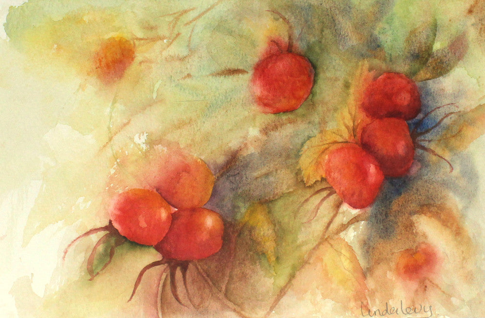 Rosehips by Linda Levy