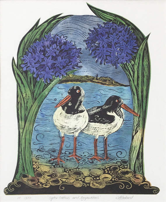 Oystercatchers and Agapanthus (colour) by Sue Rowland