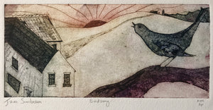 Birdsong by Jane Sunbeam