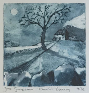 Moonlit Evening by Jane Sunbeam
