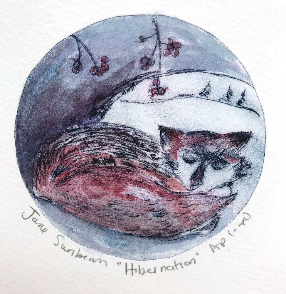 Hibernation by Jane Sunbeam