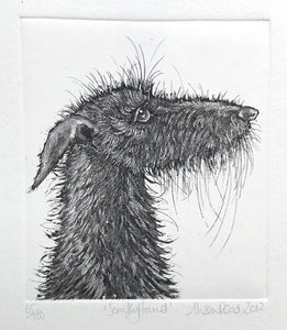Scruffy Hound by Alison Read