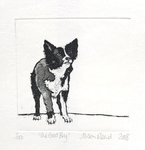 The Good Boy by Alison Read