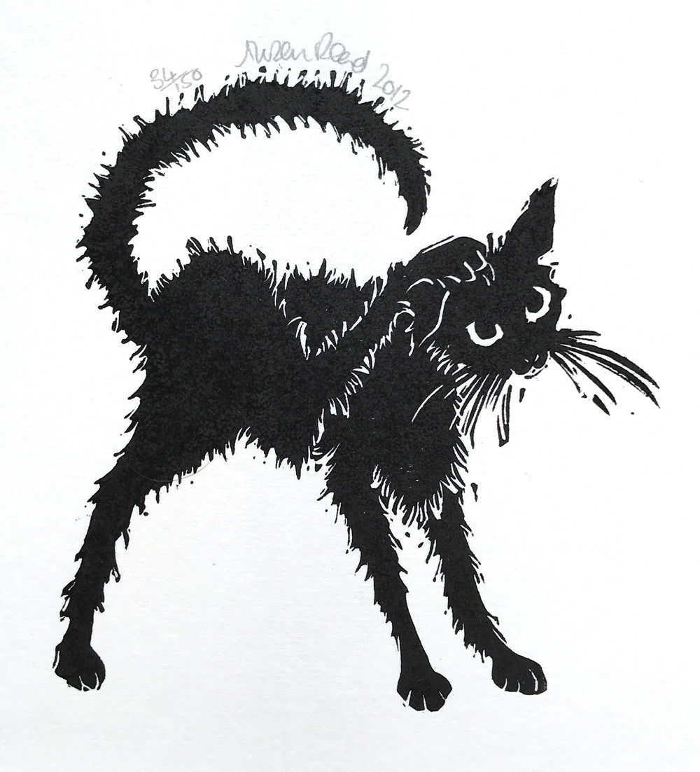 Untitled (Itchy cat) by Alison Read