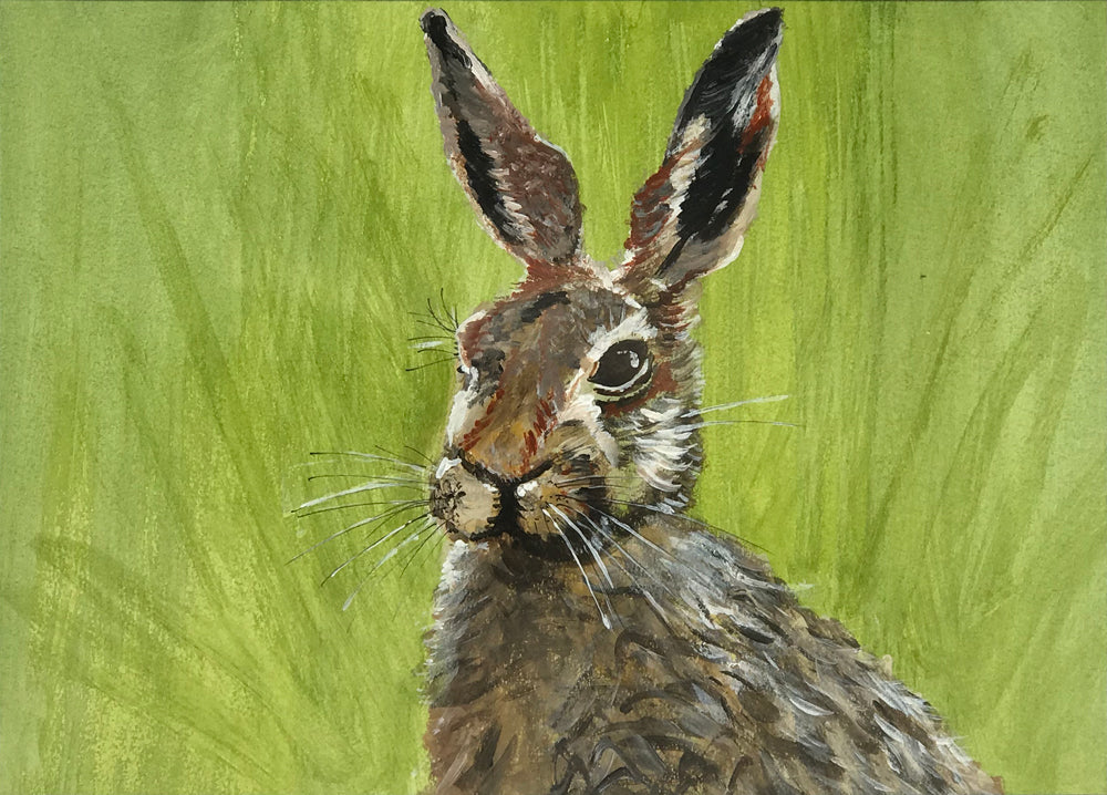 Hare 2 by Kevin Walker