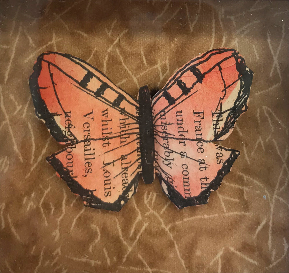 Versailles Butterfly I by Lisa Williams