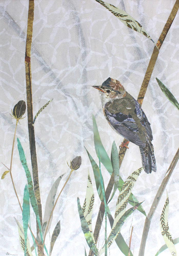 Marsh Warbler by Louise Wood