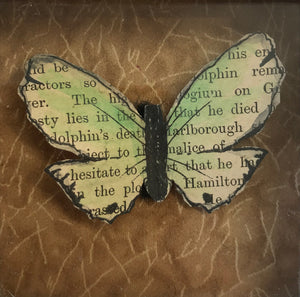 Marlborough Butterfly by Lisa Williams