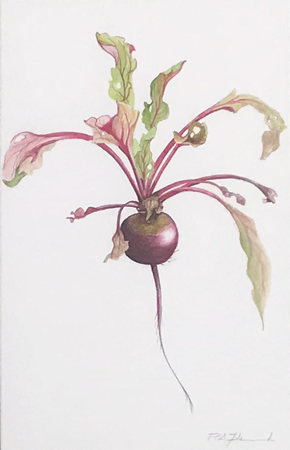 Beetroot by Peter Zelenczuk