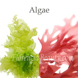Alge Extract in Skin Care