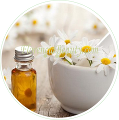 Anthemis Nobilis Flower Extract - Roman Chamomile in Skincare