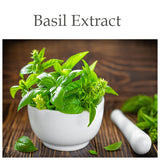 Basil Flower / Leaf Extract - a sacred medicinal herb