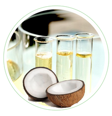 Caprylic/Capric Triglyceride Fatty Acids of Coconut Oil
