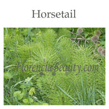 Horsetail & Horsetail Derived Ingredients in Skincare