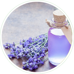 Lavender Oil in Skin Care