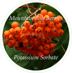 Potassium Sorbate Natural Preservative