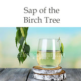 Sap of the Birch Tree Benefits in Florencia Skincare