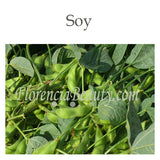 Soy and Soy derived Ingredients Benefits in Skincare