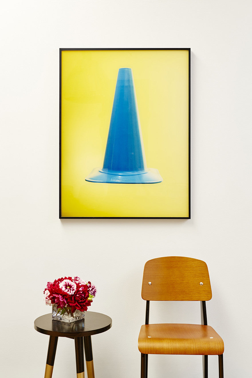 Don't be a dunce. Or do.Interior Design by Consort. Photo: Christopher Patey