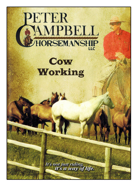 Cow Working - BooksOnHorses