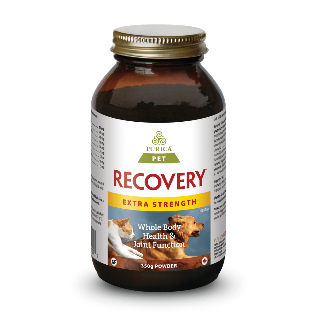 Purica Recovery Pet Extra Strength 350gms powder
