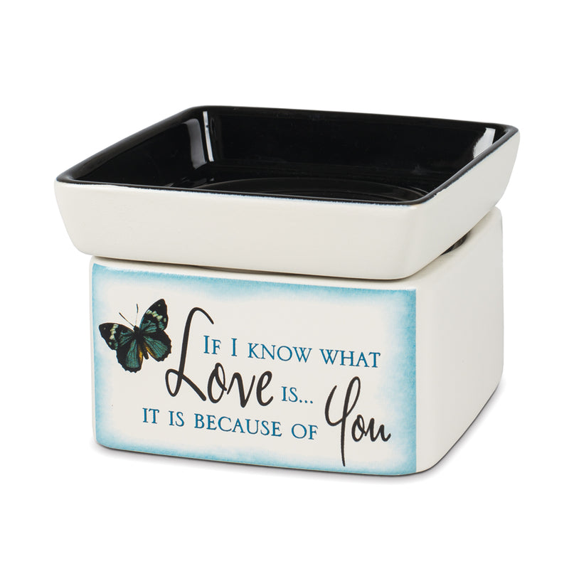 Love You Blue Butterfly Electric 2 in 1 Jar Candle Wax Tart Oil Warmer