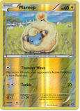 Mareep 38/114 XY Steam Siege, Reverse Holo - The Pokemart - 1