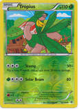 Tropius 12/108 XY Roaring Skies, Reverse Holo - The Pokemart - 1