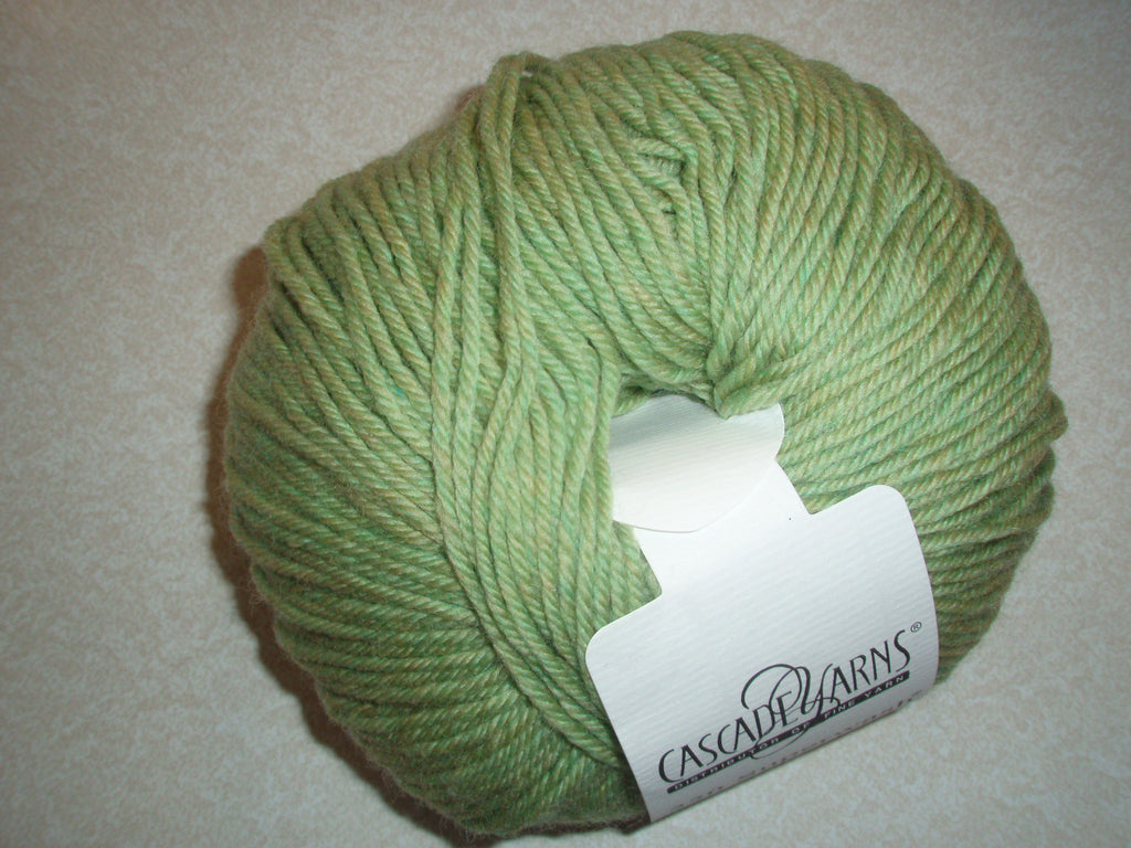 Cascade 220 Superwash - 905