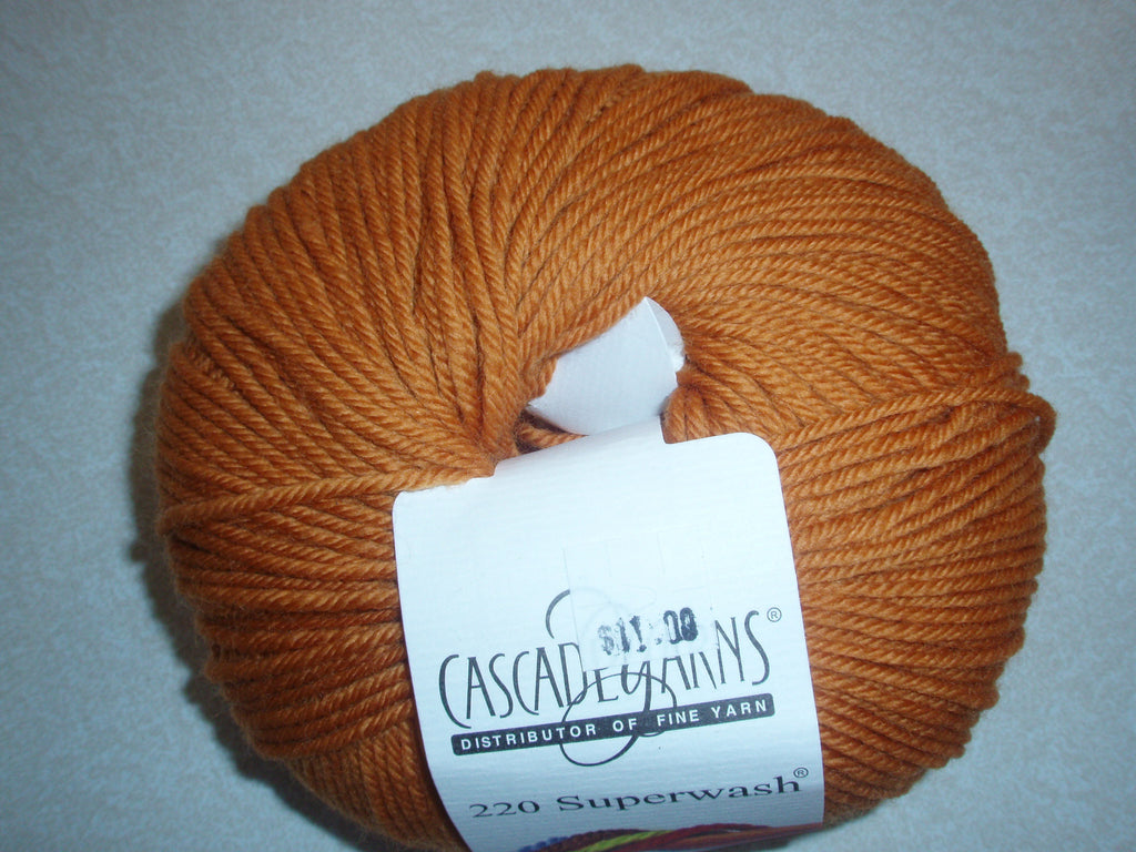 Cascade 220 Superwash - 876