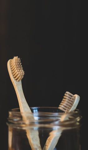 Toothbrush holder with 2 tooth brushes
