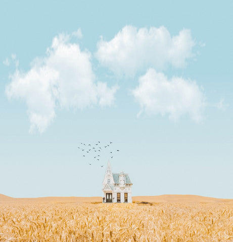 a small house in the middle of a crop field