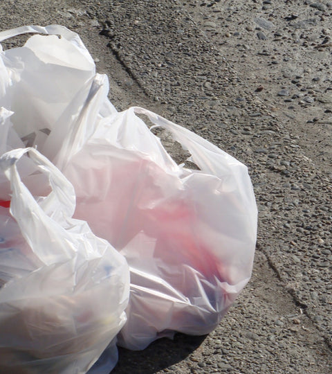 Banning the Plastic Bag