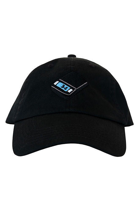 Scale Dad Hat