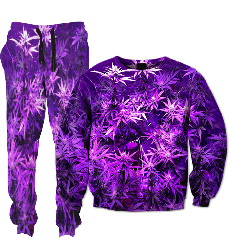 Purple Tracksuit
