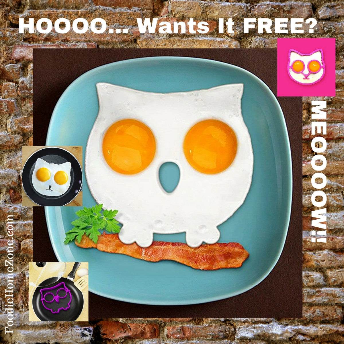 Owl or Cat Egg Mold - Funny Side Up - Free Offer!
