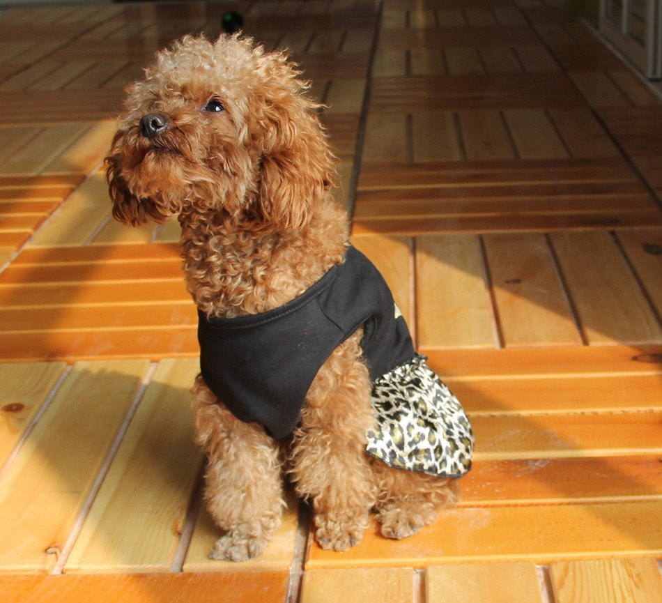 Dog Dresses - Born To Be Wild Leopard Dog Dress