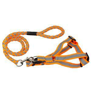 Step-in Adjustable Reflective Nylon Noctilucent Small Pet Harness & Leash Lead Set