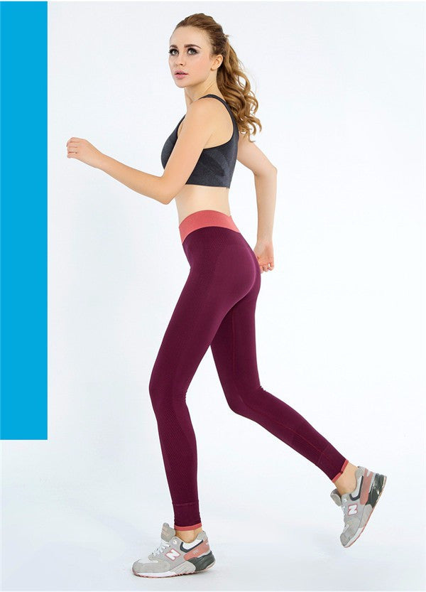 Women Fitness Elastic Pants