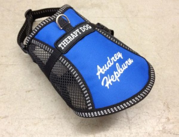 Service Dog Supplies - Combo Vests With Custom Tags