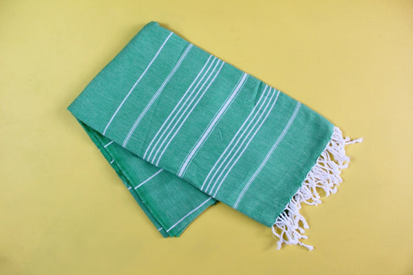 Mint Turkish Towel